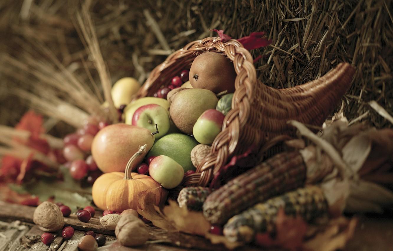 Photo wallpaper autumn, leaves, berries, basket, apples, corn, harvest, pumpkin, nuts, vegetables, pear, autumn, leaves, nuts, pears, …