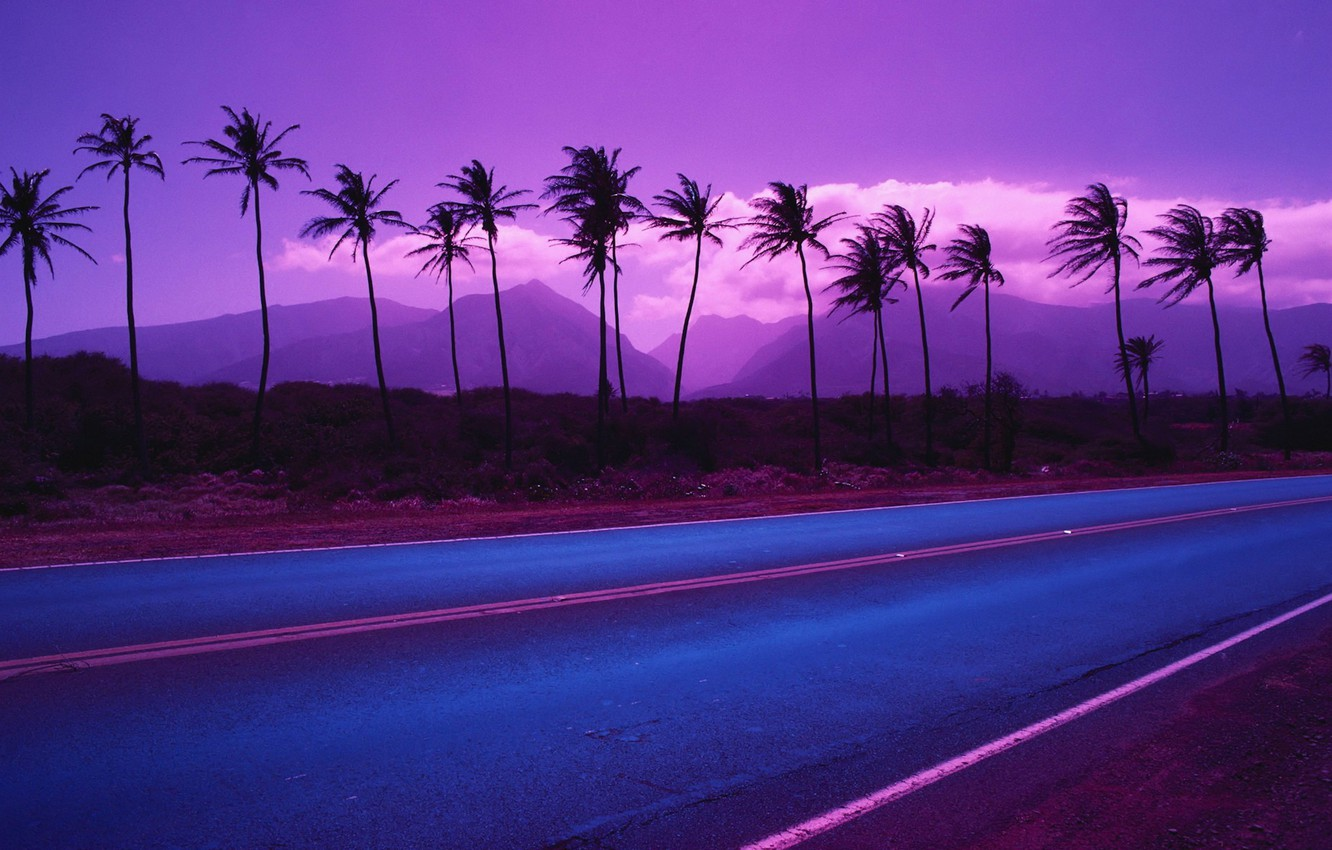 Photo wallpaper road, mountains, palm trees, color, 153