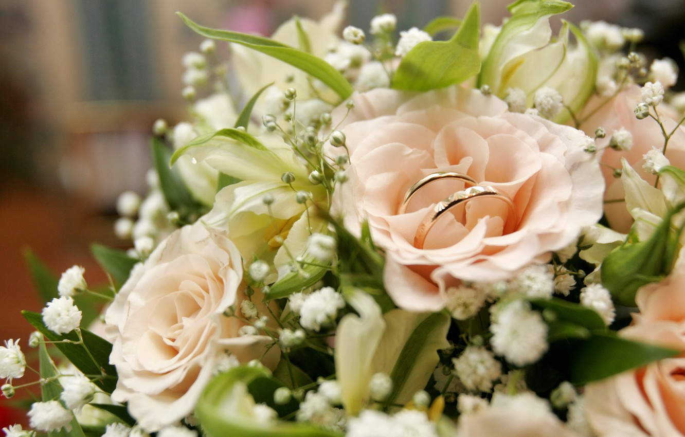 Photo wallpaper roses, bouquet, Engagement rings, wedding