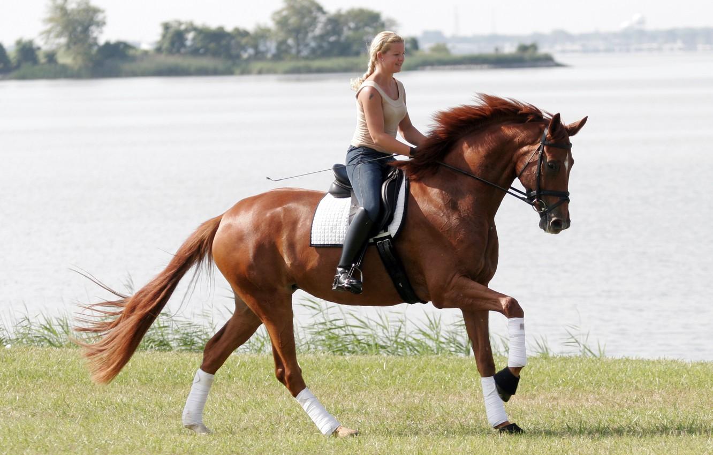 Photo wallpaper girl, horse, sports