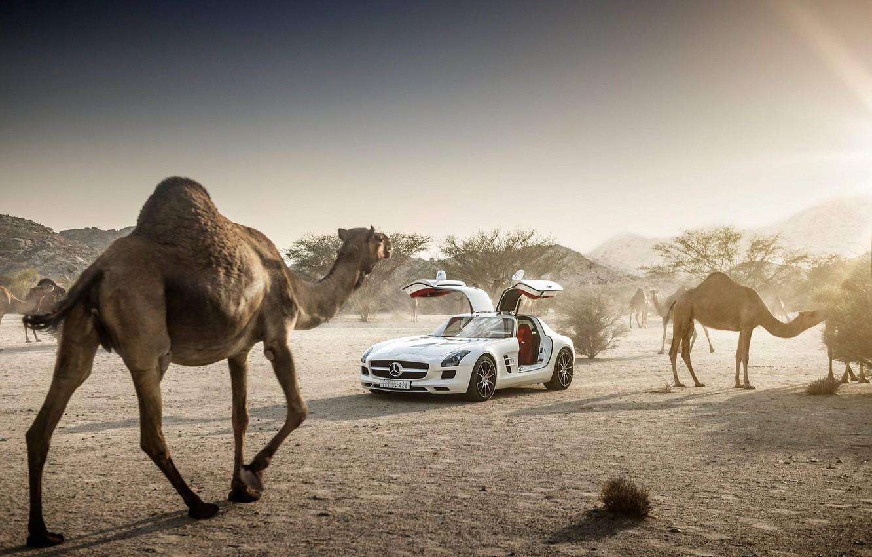 Photo wallpaper Mercedes-Benz, Sky, AMG, Sun, SLS, White, Supercar, Desert, Camels, Doors