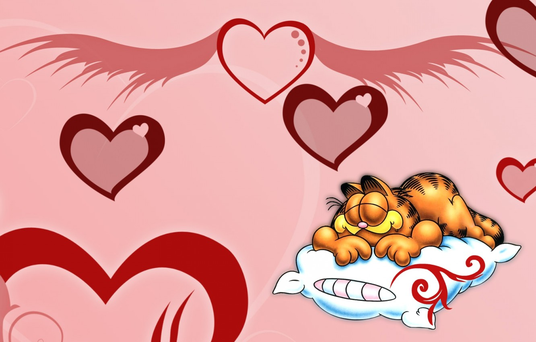 Wallpaper Cat Pillow Garfield Images For Desktop Section Raznoe Download