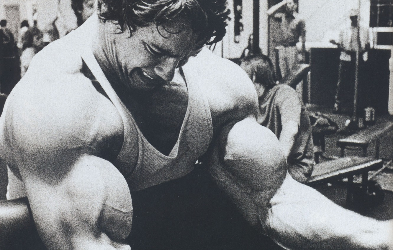 Photo wallpaper Actor, Arnold Schwarzenegger, bodybuilding, young, kachek, Producer, Director, Arnold Schwarzenegger