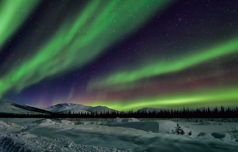 Photo wallpaper the sky, stars, snow, trees, landscape, mountains, night, Northern lights, Alaska