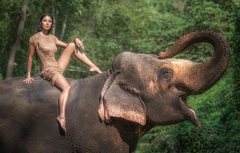 Photo wallpaper summer, look, girl, nature, face, elephant, dress, legs, beauty, trunk