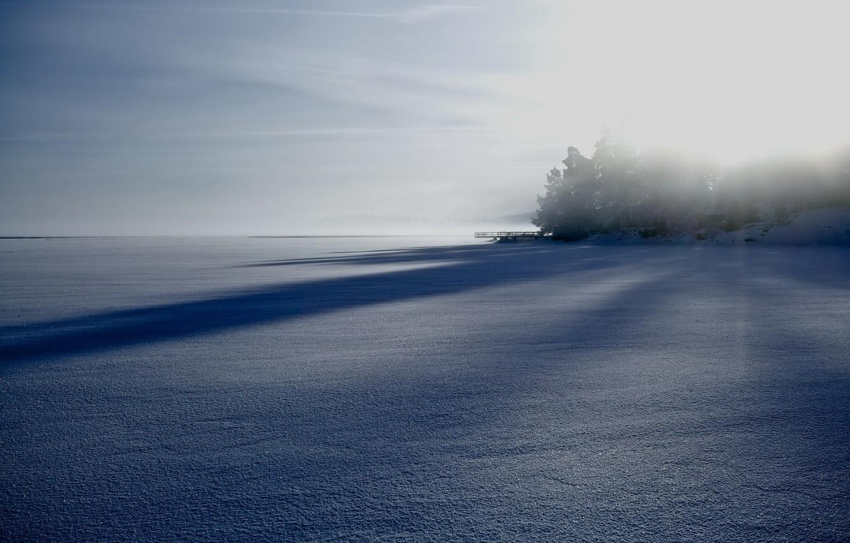 Photo wallpaper winter, field, fog