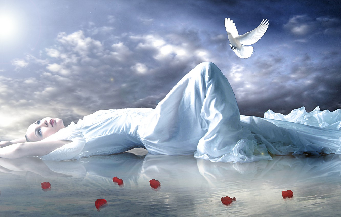 Photo wallpaper the sky, look, water, girl, pose, reflection, dove, hands, makeup, petals, lies, red lips, roses