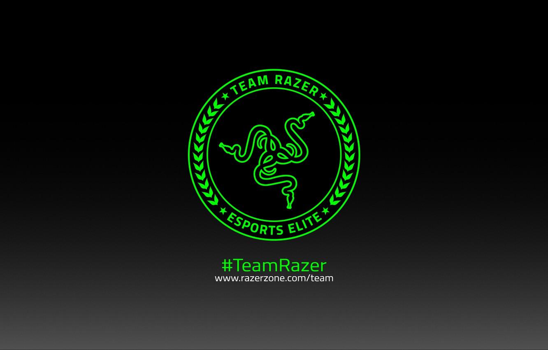 Photo wallpaper Art, Green, Black, Logo, Razer, White, Hi-Tech, Minimalism, Team Razer