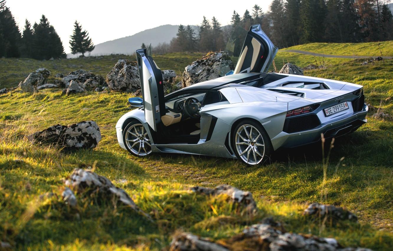 Photo wallpaper Roadster, Lamborghini, Nature, LP700-4, Aventador, Supercars, Silver, Rear, Door