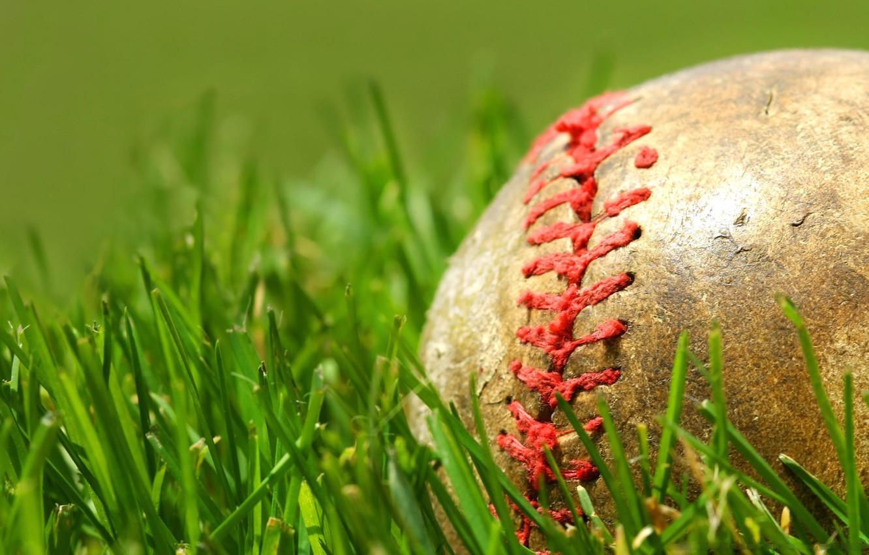 Photo wallpaper grass, green, the ball, seam