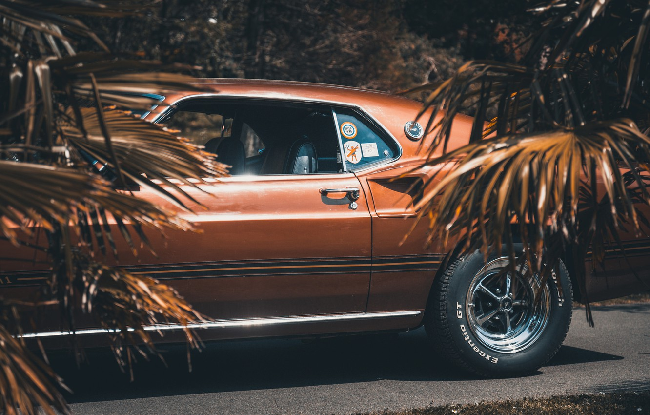 Photo wallpaper 1969, Ford Mustang, muscle car