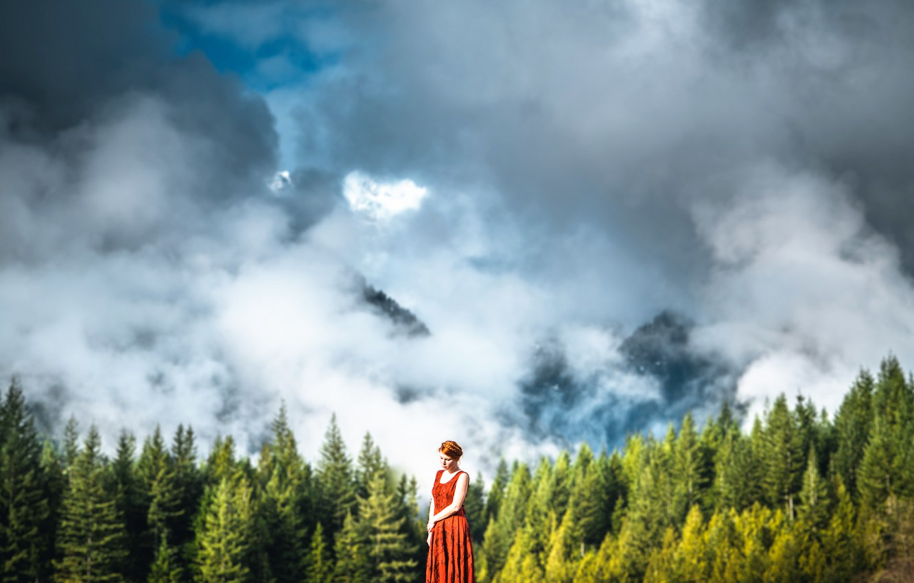 Photo wallpaper forest, the sky, girl, clouds, Lizzy Gadd, Beauty of the Forest