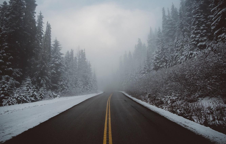Photo wallpaper winter, road, forest, snow, nature, fog, haze