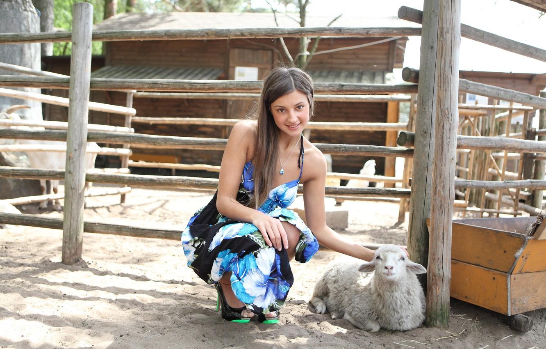 Photo wallpaper maria, sheep, farm, maria ryabushkina, thalia, Melena