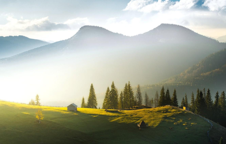 Photo wallpaper mountains, fog, morning, ate, stack, houses, Ukraine, Carpathians