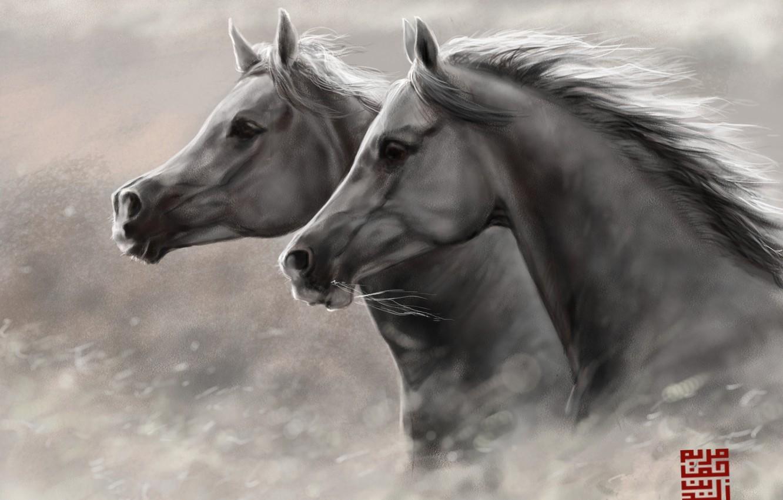 Photo wallpaper horses, horse, art, running, pair, head