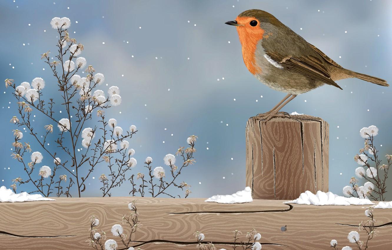 Photo wallpaper snow, nature, bird, figure, plant, column