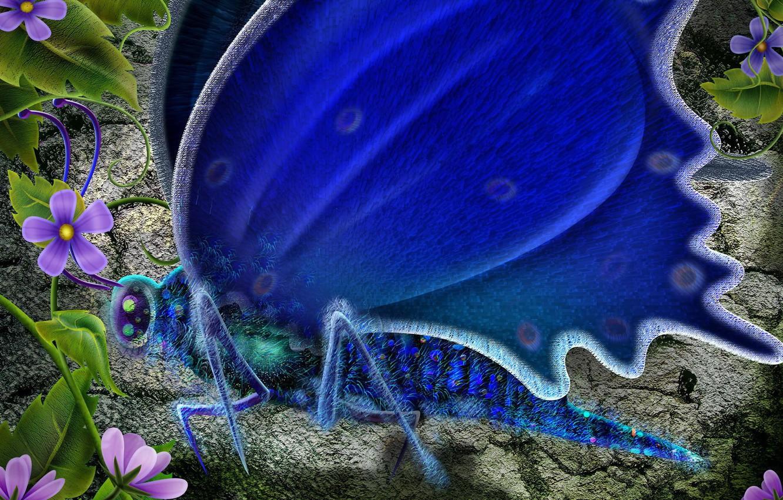 Photo wallpaper flowers, blue, Butterfly
