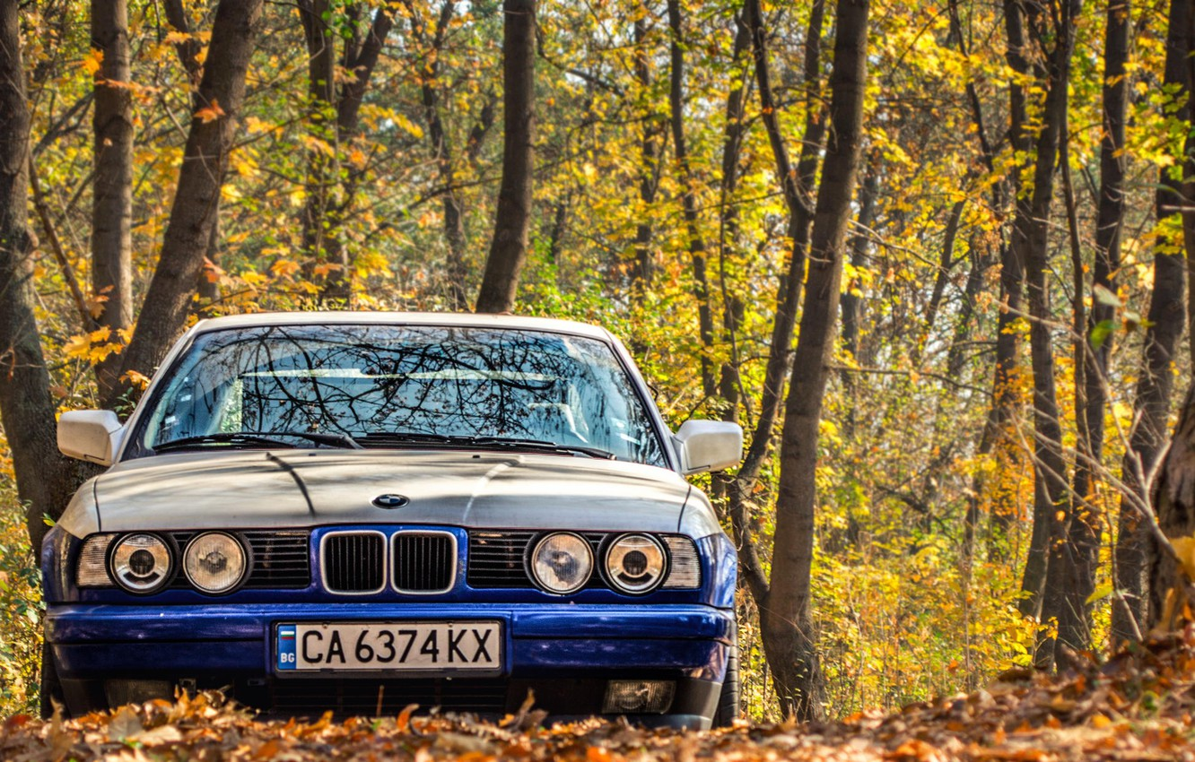 Photo wallpaper autumn, leaves, lights, tuning, bmw, BMW, classic, 525, e34
