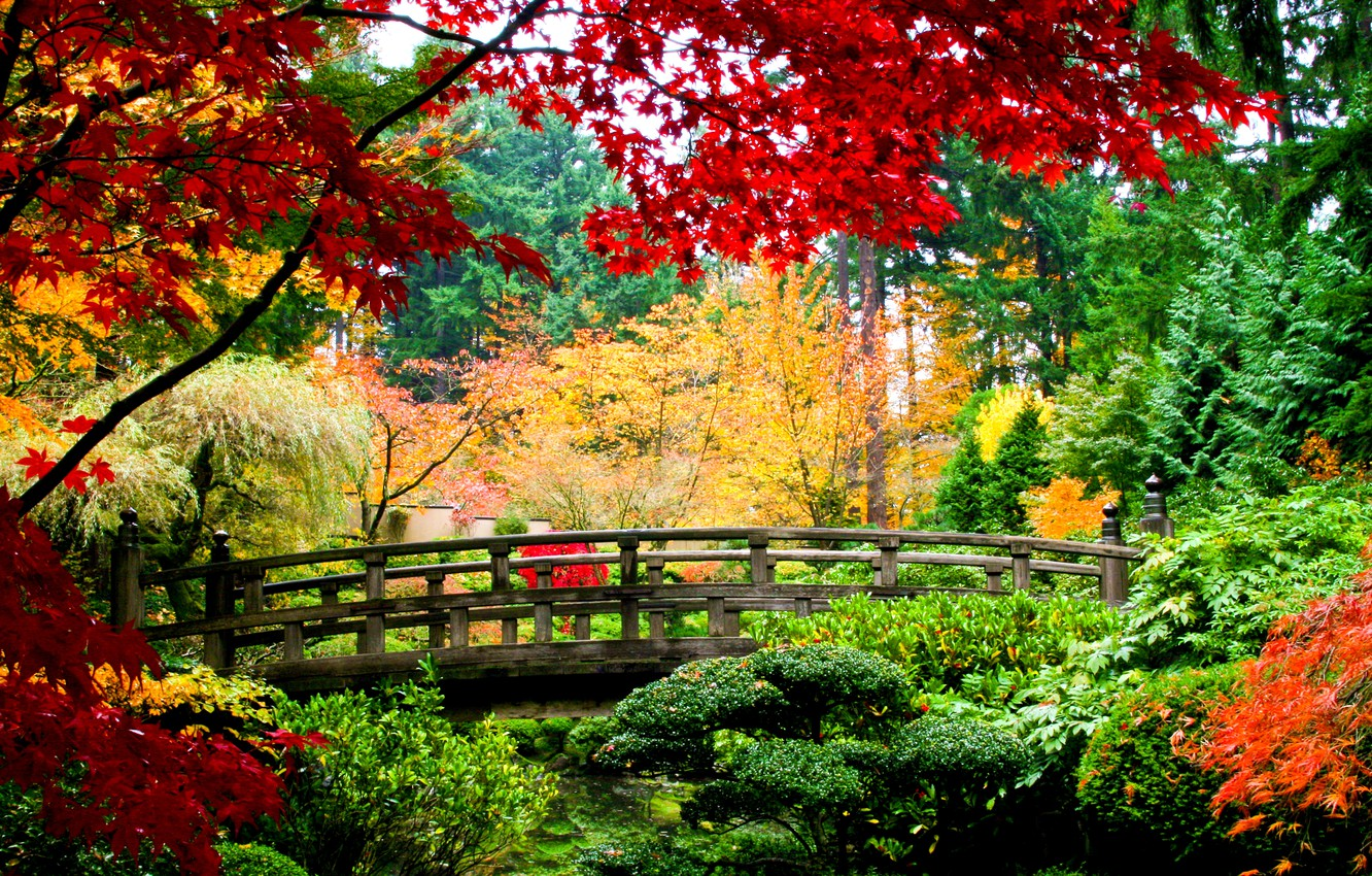 Photo wallpaper autumn, leaves, trees, bridge, nature, yellow, green, red, wooden