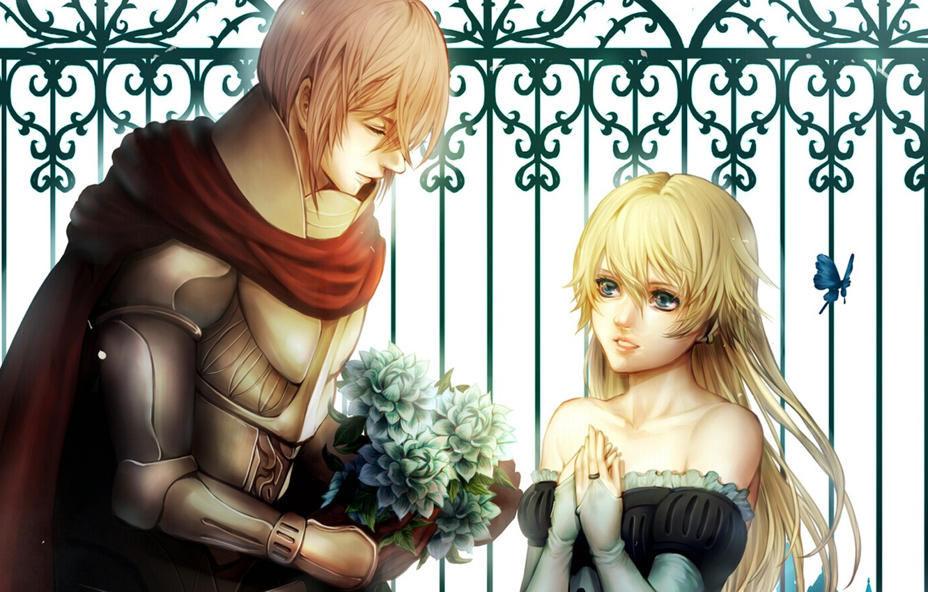 Photo wallpaper girl, butterfly, bouquet, pair, Guy, lovers, knight