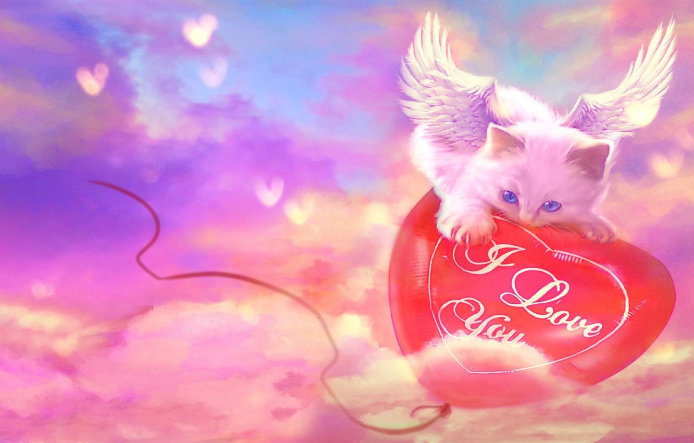 Photo wallpaper cat, the inscription, wings, hearts, I love you, balloon