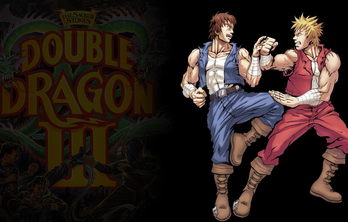 Wallpaper Nes Double Dragon Billy Amp Jimmy Images For Desktop