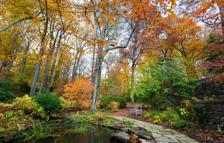 Photo wallpaper autumn, trees, nature, pond, Park, photo, USA, Longwood Kennett Square