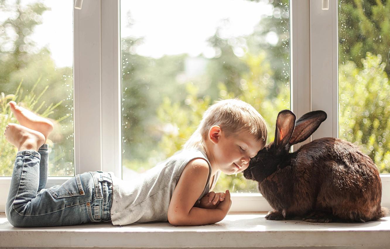 Photo wallpaper love, mood, boy, rabbit, window, friendship, friends, on the windowsill