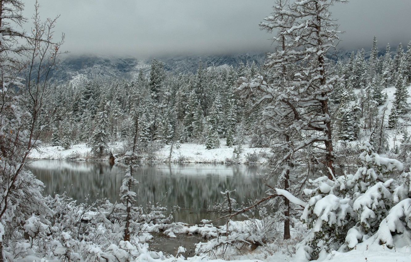 Photo wallpaper winter, forest, clouds, snow, mountains, lake