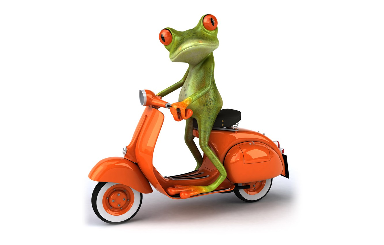 Photo wallpaper transport, graphics, frog, moped, Free frog 3d