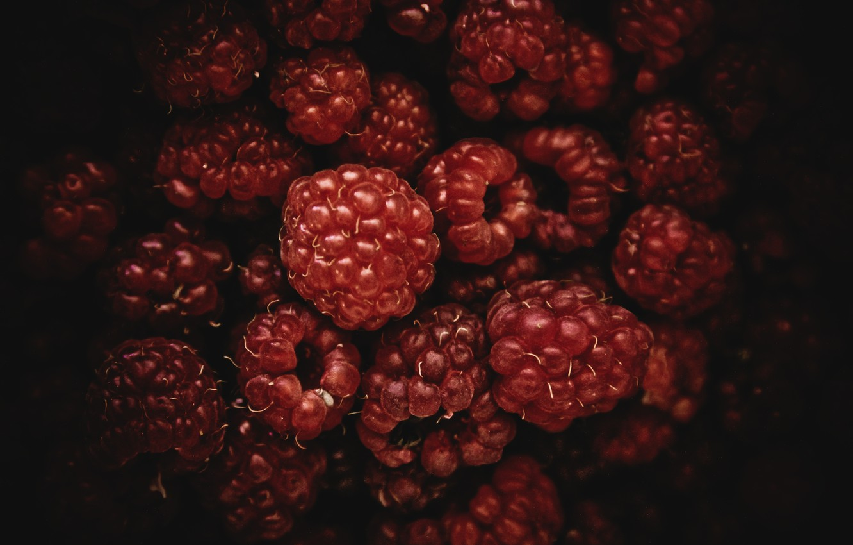 Photo wallpaper red, berries, raspberry, black