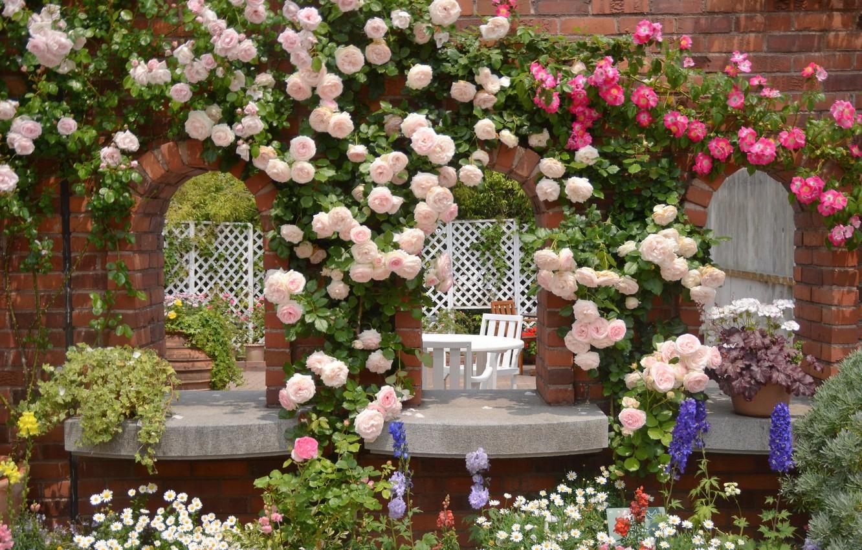 Photo wallpaper flowers, roses, chamomile, garden