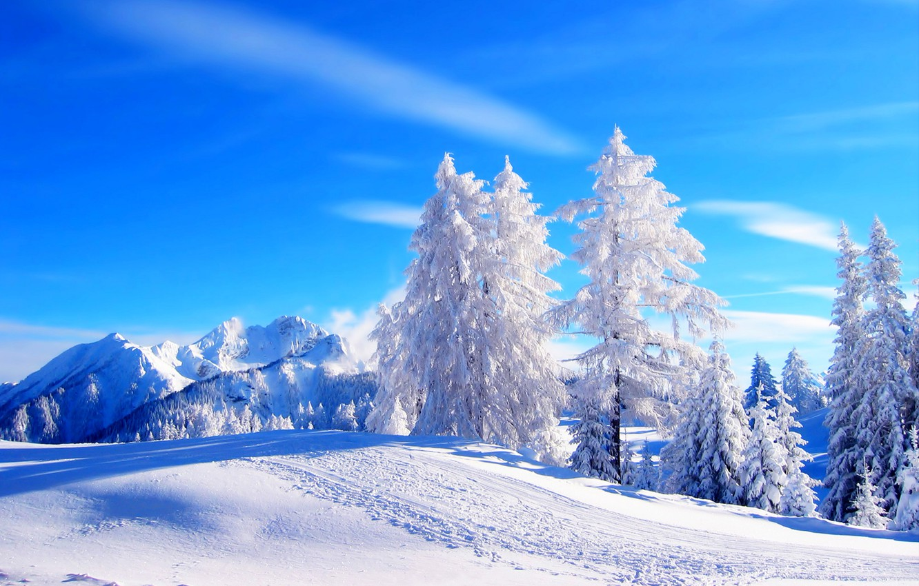 Photo wallpaper winter, road, forest, the sky, snow, trees, landscape, mountains, nature, white, forest, road, sky, trees, …