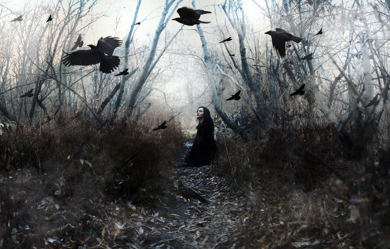 Photo wallpaper girl, birds, nature