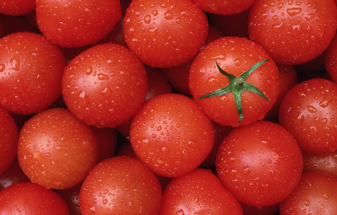 Photo wallpaper food, red, tomatoes, tomatoes, delicious, clean