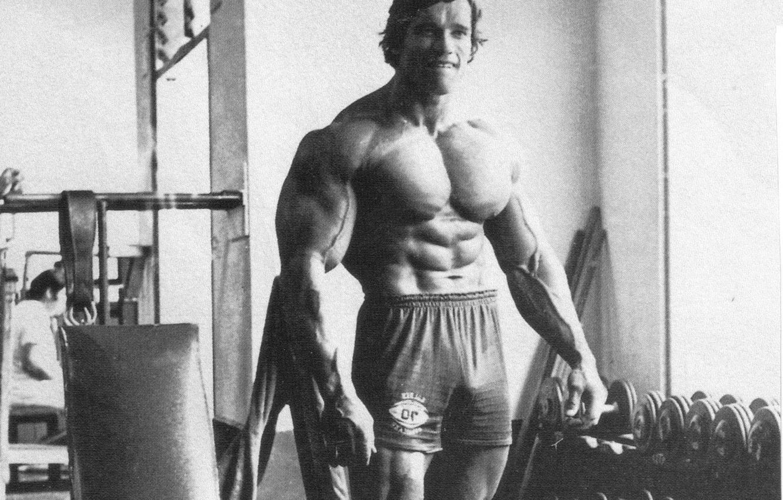 Photo wallpaper Arnold Schwarzenegger, bodybuilding, bodybuilding, Bodybuilding
