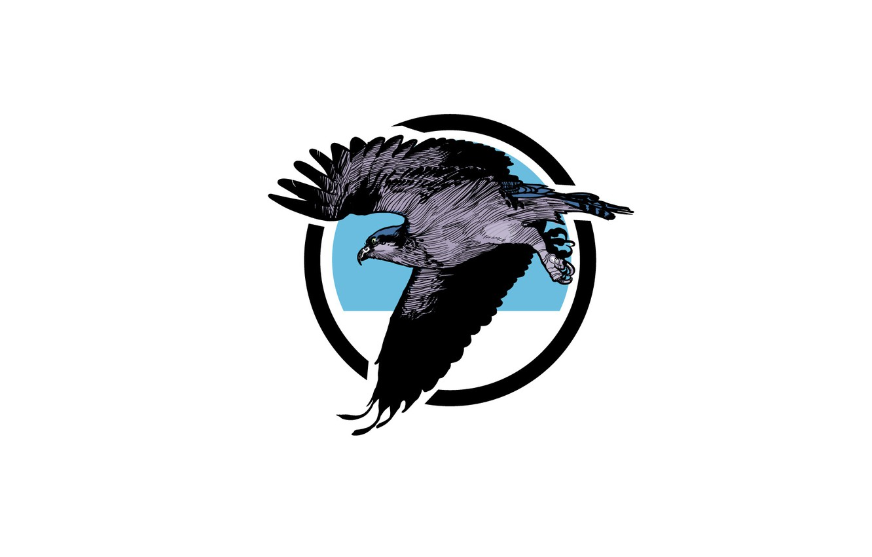 Photo wallpaper flight, bird, eagle, predator