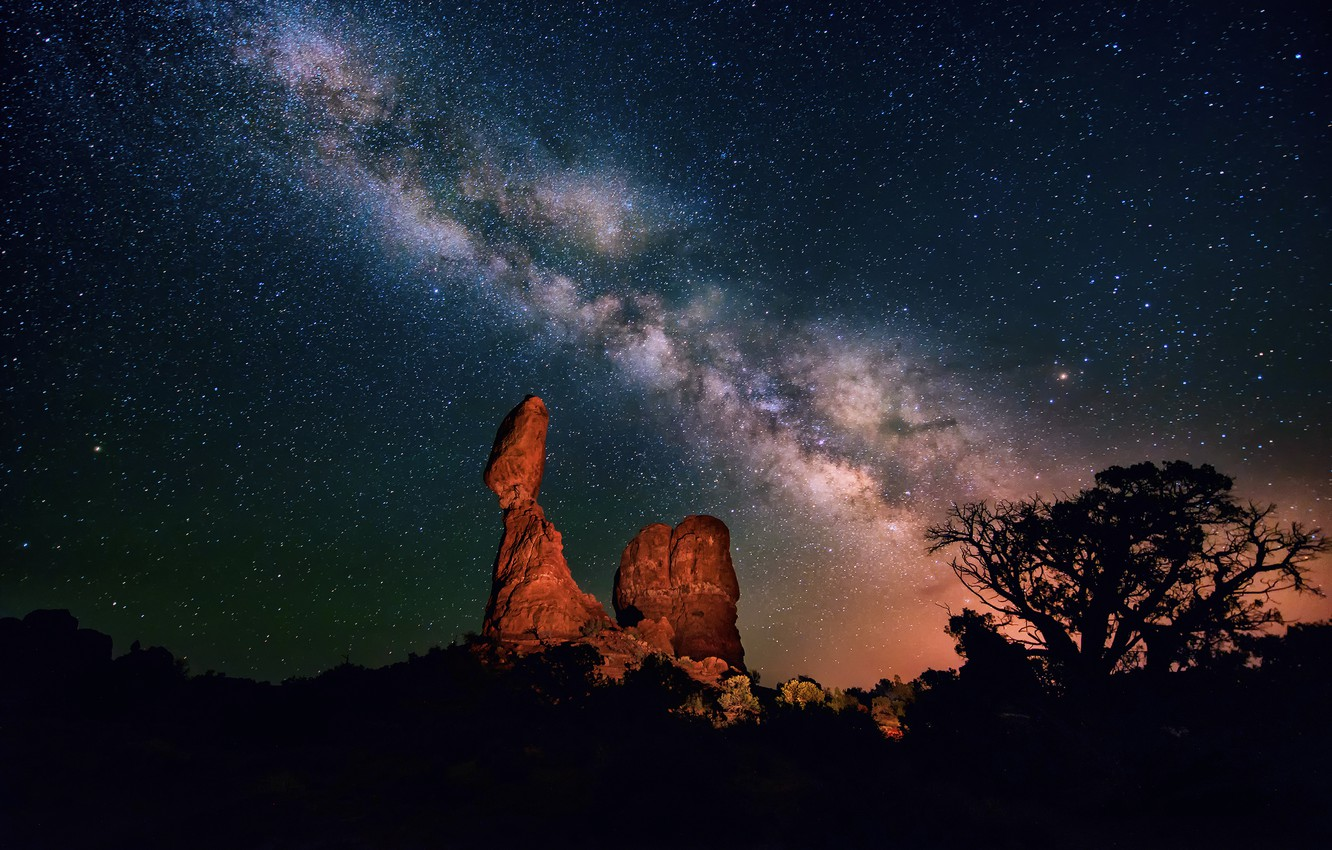 Photo wallpaper the sky, stars, night, tree, desert, canyon, the milky way, silhouettes, the bushes