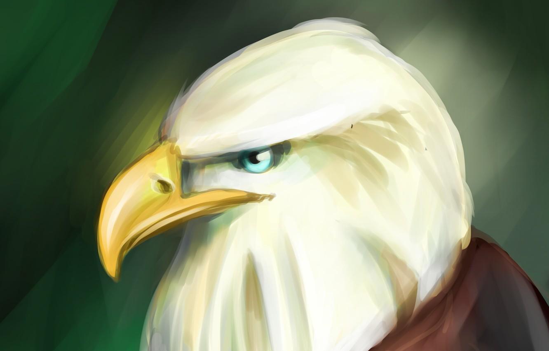 Photo wallpaper eagle, art, art, eagle