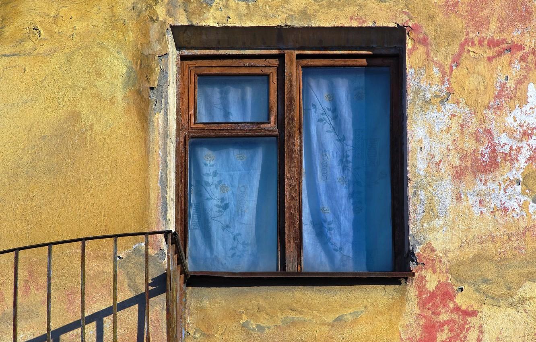 Photo wallpaper background, wall, window