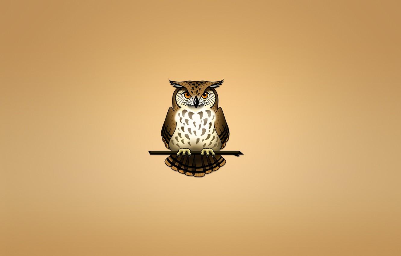 Photo wallpaper owl, bird, branch, light background, owl