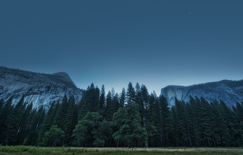 Photo wallpaper USA, California, Yosemite Valley, National Park, California, Foresta, Yosemite Valley