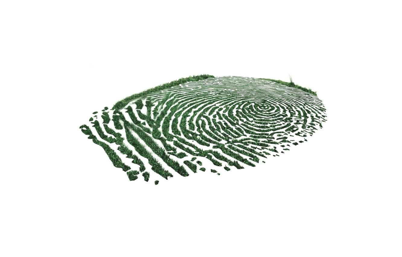 Photo wallpaper grass, background, imprint, finger