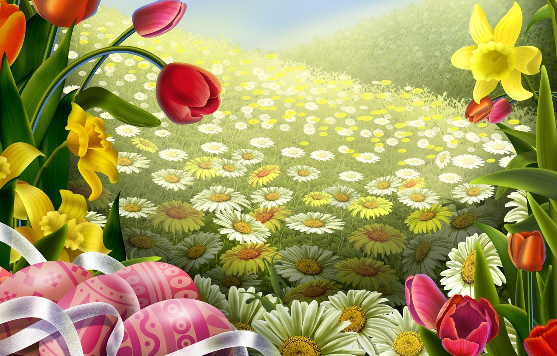 Photo wallpaper field, flowers, Tulip, Daisy, art, Easter, tape