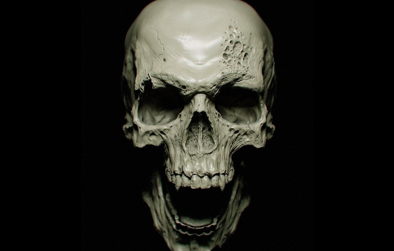 Photo wallpaper sake, vampire, bones, teeth