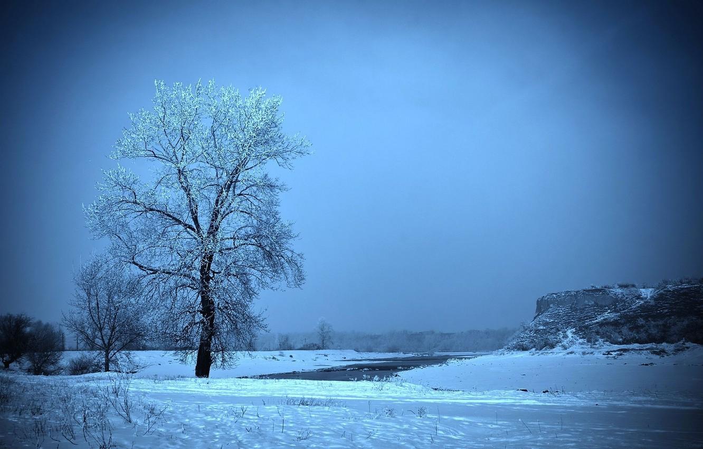 Photo wallpaper frost, field, snow, tree, Winter, slide