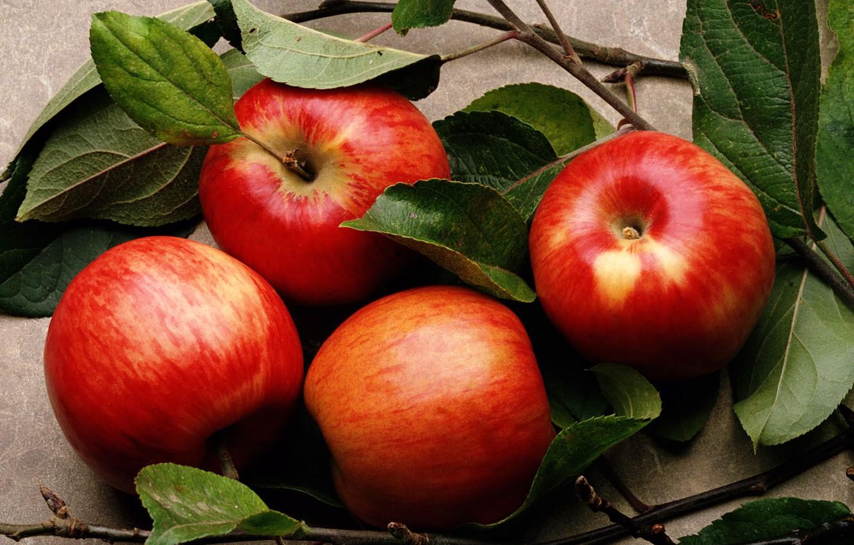 Photo wallpaper leaves, apples, food, fruit