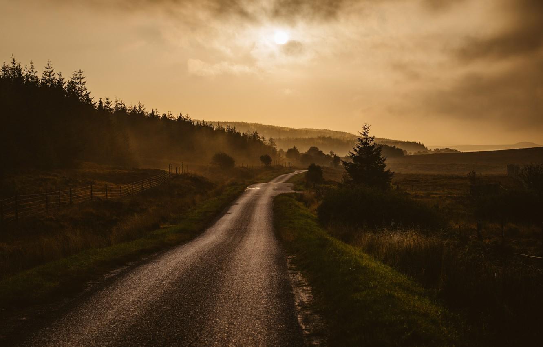 Photo wallpaper road, morning, fog, dawn, countryside, highlands, mist