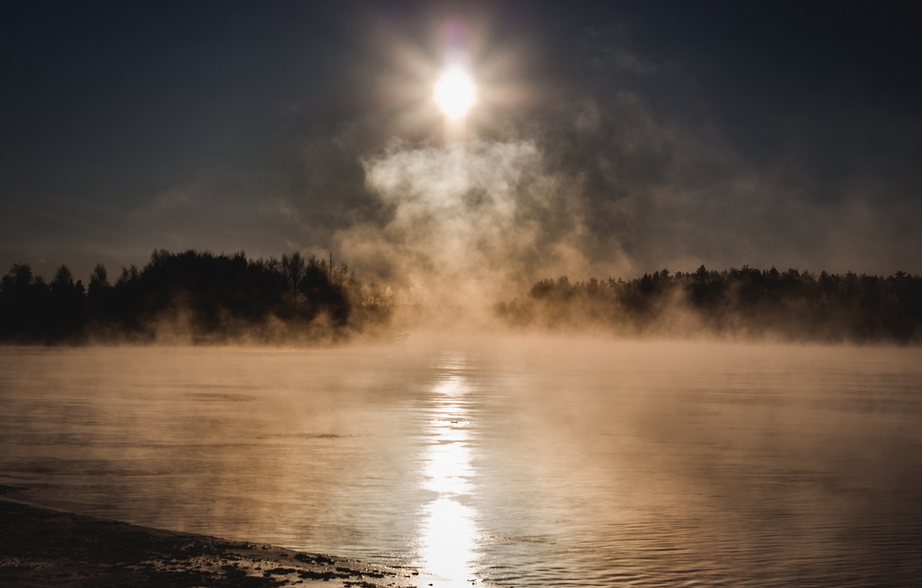 Photo wallpaper cold, forest, the sun, fog, lake